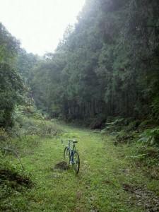 自転車 010