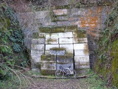 なき トンネル いぬ